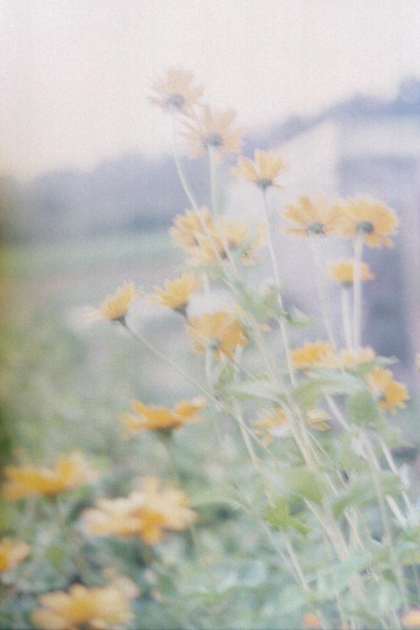 Bild018_Neg.Nr.17A